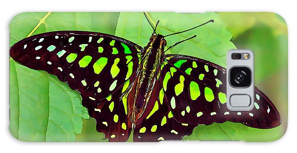 Marvelous Malachite Butterfly 2 Galaxy Case
