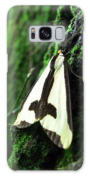 Maryland Clymene Moth Galaxy Case