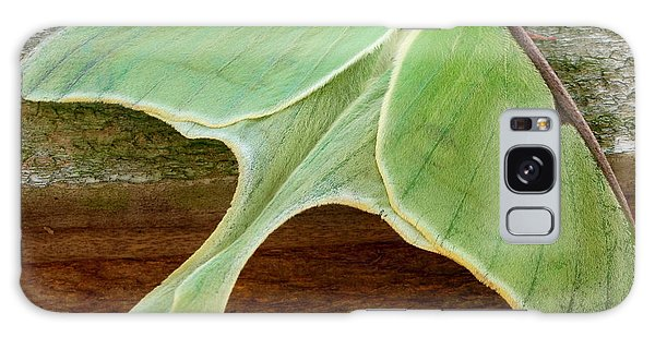 Maryland Luna Moth Galaxy Case