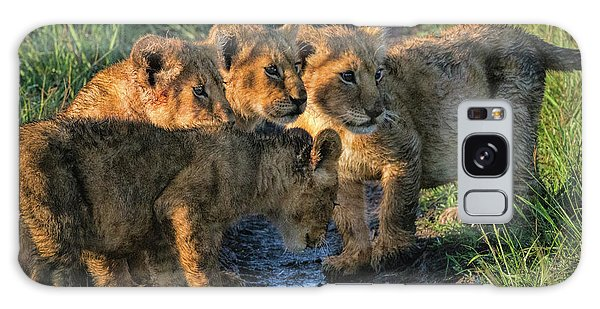 Masai Mara Lion Cubs Galaxy Case by Karen Lewis