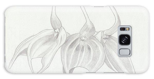 Masdevalia Tovarensis Orchid Galaxy Case
