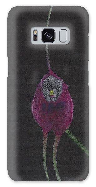 Masdevallia Infracta Orchid Galaxy Case