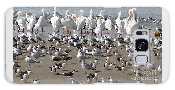Matagorda Beach Sea Birds Galaxy Case