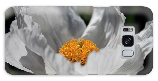 Matilija Poppy Galaxy Case