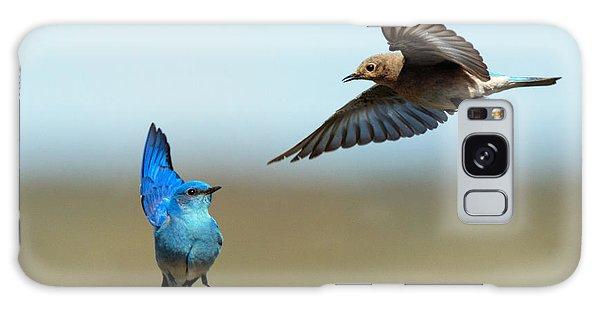 Bluebird Galaxy Case - Mating Dance by Mike Dawson