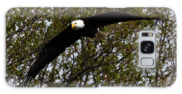 Mature Bald Eagle Galaxy Case
