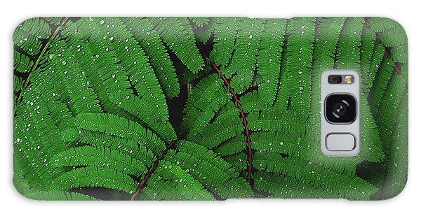 Maui Forest Galaxy Case