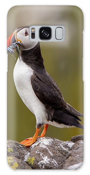 May Puffin Galaxy Case