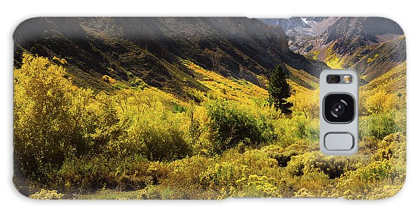 Mcgee Creek Alive With Color Galaxy Case