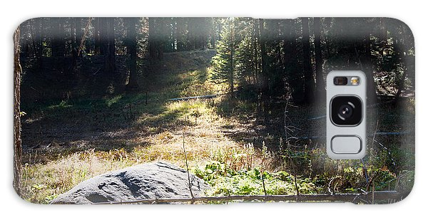 Galaxy Case Featuring The Photograph Meadow By Kimberly Valentine