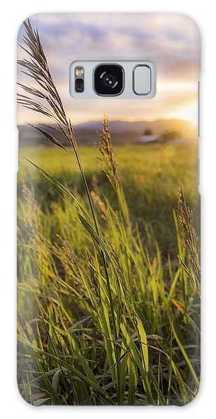 West Galaxy Case - Meadow Light by Chad Dutson