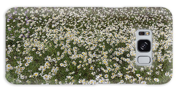 Galaxy Case featuring the photograph Meadow Of Daisey Wildflowers Panorama by James BO Insogna