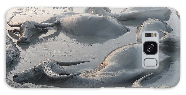 Medium Shot Of A Group Of Water Buffalos Wallowing In A Mud Hole Galaxy Case by Jason Rosette
