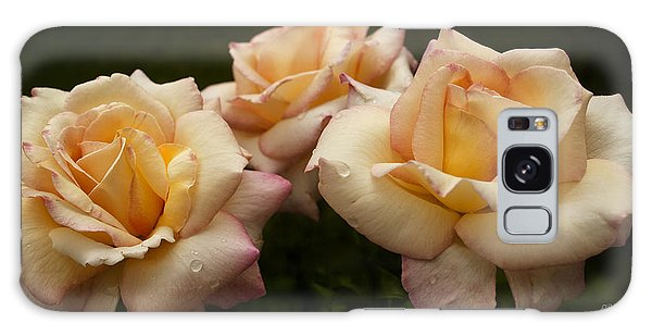 Medley Of Three Yellow Roses Galaxy Case by Barbara Middleton