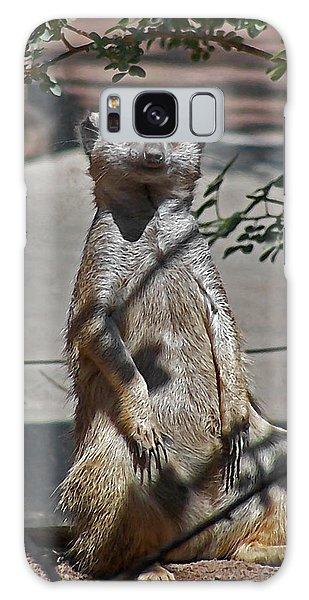 Meerkat 2 Galaxy Case