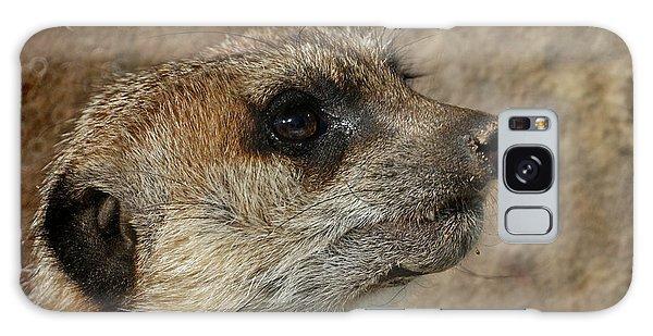 Meerkat 3 Galaxy Case