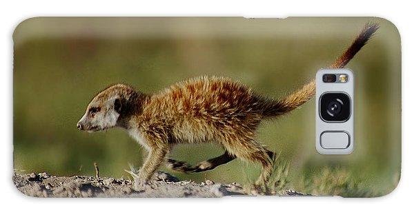 Meerkat Baby Galaxy Case