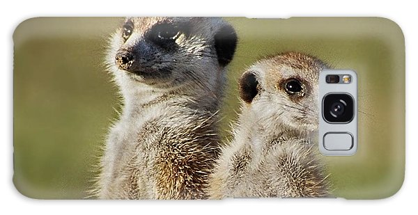 Meerkat Duo Galaxy Case