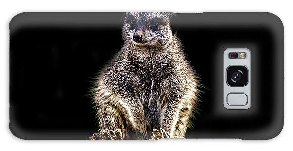 Meerkat Lookout Galaxy Case