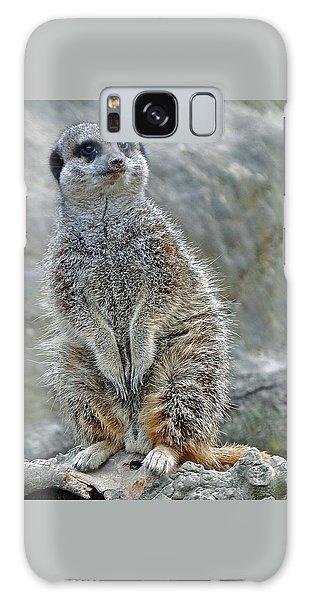 Meerkat Poses Galaxy Case
