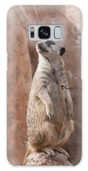 Meerkat Sentry 1 Galaxy Case