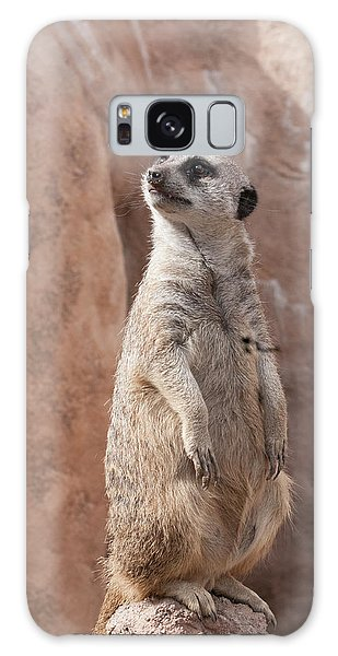 Meerkat Sentry 1 Galaxy Case