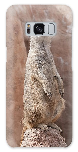 Meerkat Sentry 2 Galaxy Case