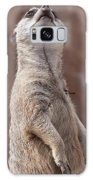 Meerkat Sentry 4 Galaxy Case