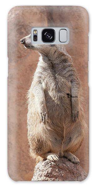 Meerkat Sentry 5 Galaxy Case