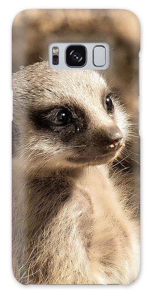 Meerkatportrait Galaxy Case