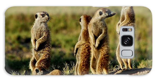 Meerkats Watching Everywhere Galaxy Case