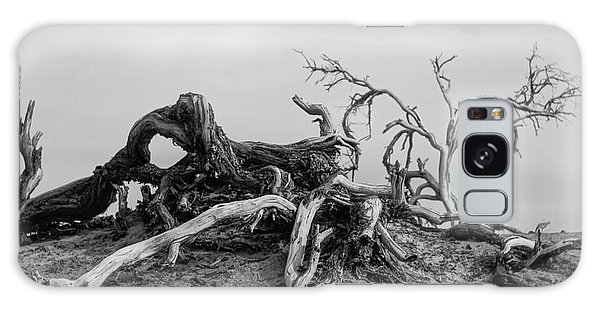 Mesquite Roots - Death Valley 2015 Galaxy Case