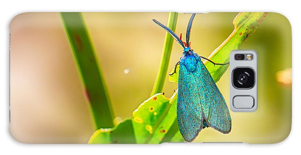 Metallic Forester Moth Galaxy Case
