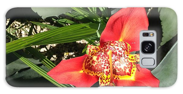Mexican Orchid Galaxy Case