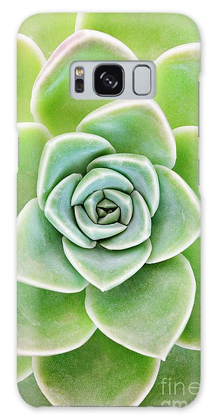 Desert Flora Galaxy Case - Mexican Snowball Succulent  by Neil Overy