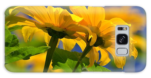 Mexican Sunflower Tree Galaxy Case