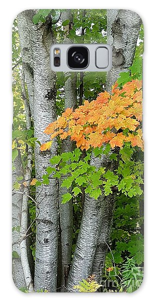 Michigan Autumn Galaxy Case