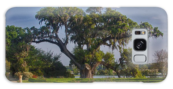 Middleton Oak Galaxy Case