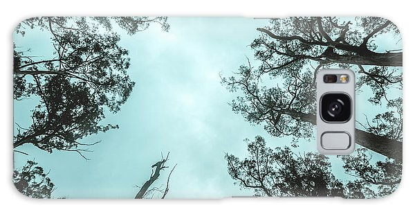 Pine Branch Galaxy Case - Midnight Canopy by Jorgo Photography - Wall Art Gallery