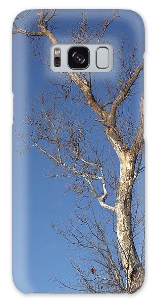 Mighty Tree Galaxy Case