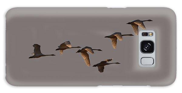 Migrating Swans Galaxy Case