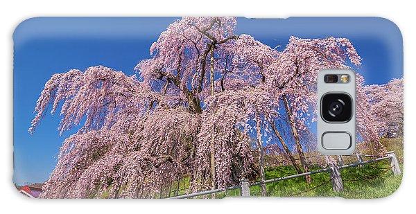 Galaxy Case featuring the photograph Miharu Takizakura Weeping Cherry0565 by Tatsuya Atarashi