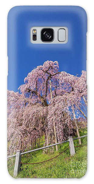 Galaxy Case featuring the photograph Miharu Takizakura Weeping Cherry32 by Tatsuya Atarashi