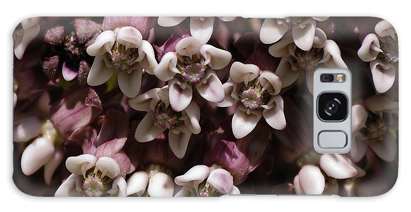 Milkweed Florets Galaxy Case by Randy Bodkins