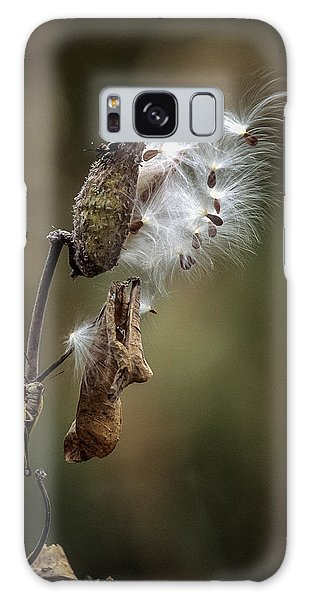 Milkweed Plant Dried And Blowing In The Wind Galaxy Case