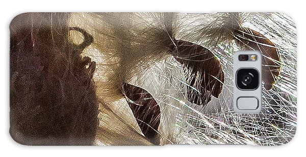 Milkweed Seed Burst Galaxy Case