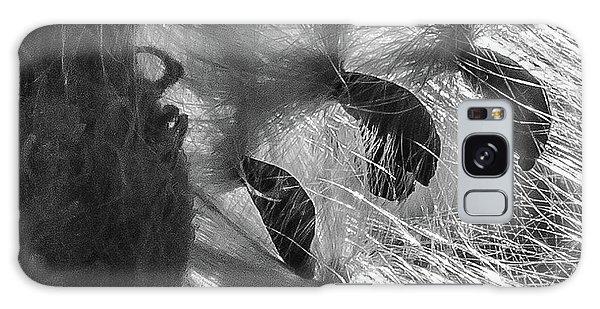 Milkweed Sunburst In Black And White Galaxy Case