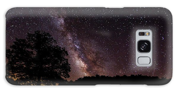 Milky Way And The Tree Galaxy Case