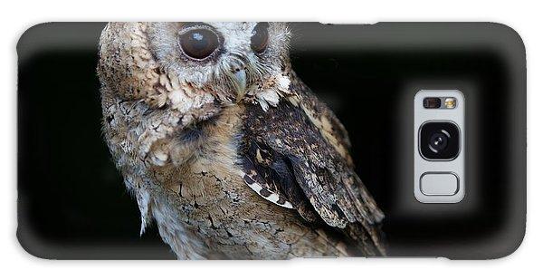 Minature Owl Galaxy Case