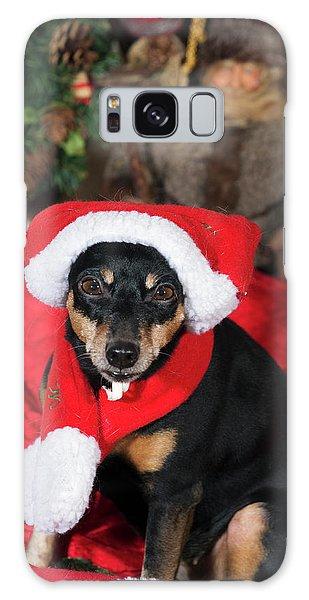 Miniature Pinscher Wishing A Merry Christmas Galaxy Case by Christian Lagereek